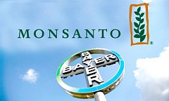 monsanto bayer-1